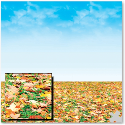 Autumn Horizon Design Fadeless Display Paper - 3.6m